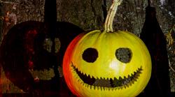 Pumpkin carved into a jack-o